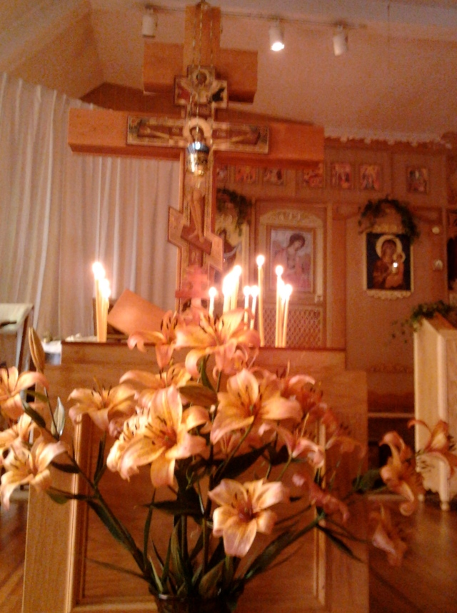 tiger lilies pentecost